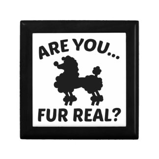 Are You Fur Real? Gift Box