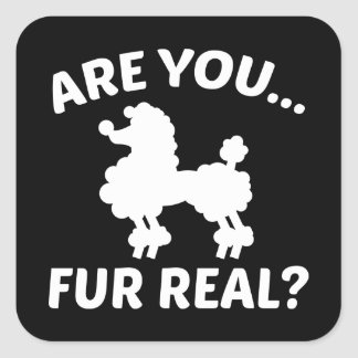 Are You Fur Real? Square Sticker