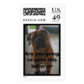 Are you going to open this letter or ... stamp