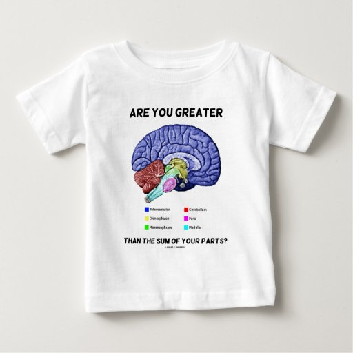 Are You Greater Than The Sum Of Your Parts? Brain Baby T-Shirt