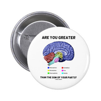 Are You Greater Than The Sum Of Your Parts? Brain Pinback Button