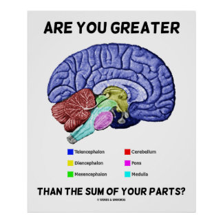 Are You Greater Than The Sum Of Your Parts? Brain Poster