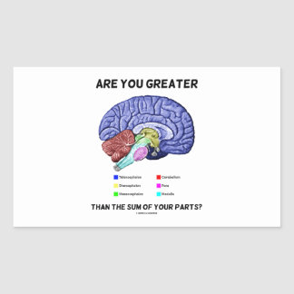 Are You Greater Than The Sum Of Your Parts? Brain Rectangle Sticker