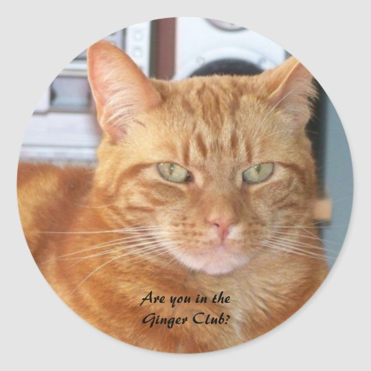Are you in the Ginger Club? Classic Round Sticker