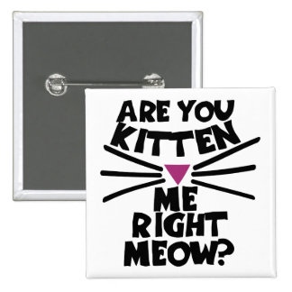Are you kitten me right meow 2 inch square button