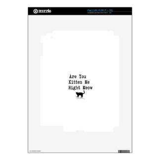 Are You Kitten Me Right Meow Decal For The iPad 2