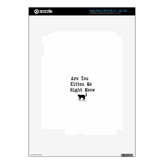 Are You Kitten Me Right Meow iPad 3 Skin