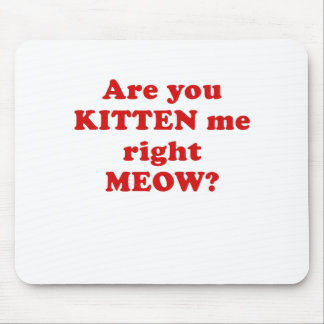 Are you Kitten me right Meow Mouse Pad