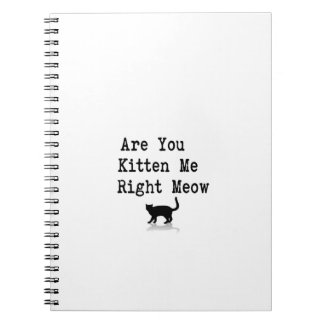 Are You Kitten Me Right Meow Notebook