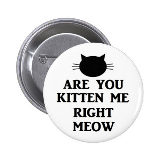 Are You Kitten Me Right Meow Pinback Button