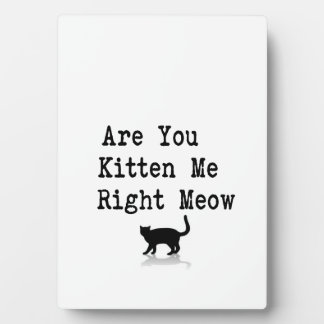 Are you Kitten Me Right Meow Plaque