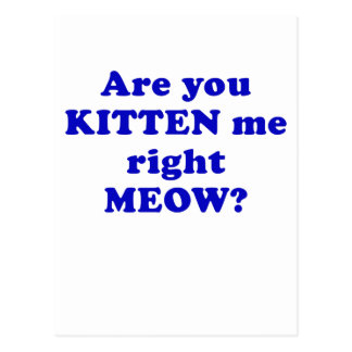 Are you Kitten me right Meow Postcard