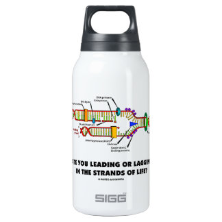 Are You Leading Or Lagging In The Strands Of Life? Insulated Water Bottle