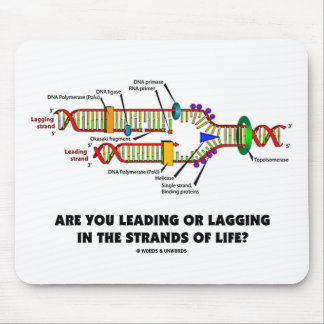 Are You Leading Or Lagging In The Strands Of Life? Mouse Pad