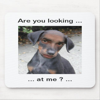 are you looking at me funny dog mousemat mouse pad
