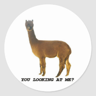 Are you looking at me? round stickers