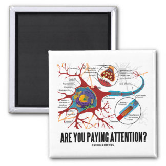 Are You Paying Attention? (Neuron Synapse Humor) 2 Inch Square Magnet