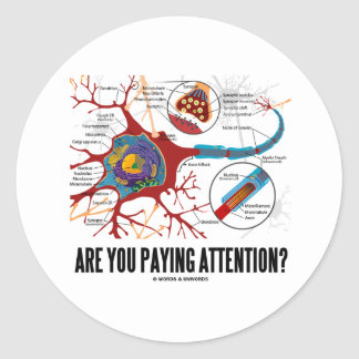 Are You Paying Attention? (Neuron Synapse Humor) Classic Round Sticker