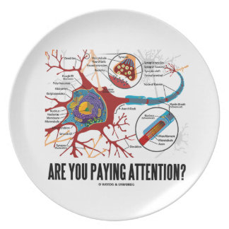 Are You Paying Attention? Neuron Synapse Humor Dinner Plate