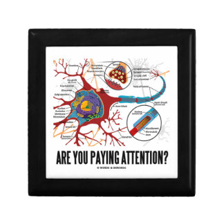 Are You Paying Attention? Neuron Synapse Humor Gift Box