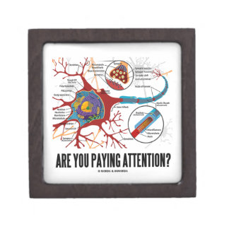 Are You Paying Attention? Neuron Synapse Humor Jewelry Box