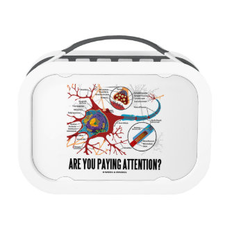 Are You Paying Attention? Neuron Synapse Humor Lunch Box