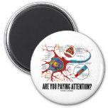 Are You Paying Attention? (Neuron Synapse Humor) 2 Inch Round Magnet