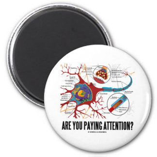 Are You Paying Attention? (Neuron Synapse Humor) Magnet