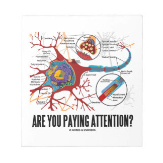 Are You Paying Attention? Neuron Synapse Humor Note Pad