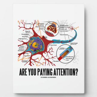 Are You Paying Attention? Neuron Synapse Humor Plaque
