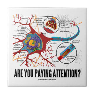 Are You Paying Attention? Neuron Synapse Humor Tile