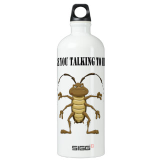 Are you talking to me aluminum water bottle
