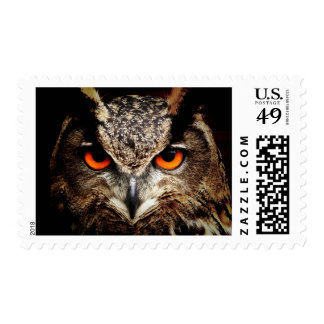 ARE YOU TALKING TO ME? (owl) ~ Postage