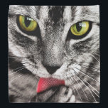 """ARE YOU TALKING TO ME (tabby cat) ~ Bandana<br><div class=""""desc"""">Thank You for shopping my designs! To see the fine artistic nudes, you need to reset the filters in your account so that you can view &quot;R&quot; rated content. If you see one of my pictures, artworks or designs you like and want it on a specific product, please do NOT...</div>"""