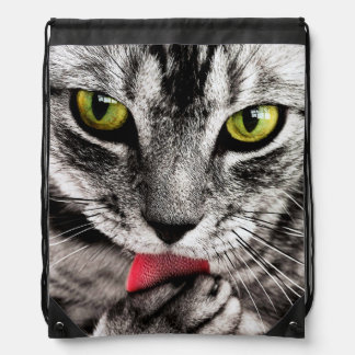 ARE YOU TALKING TO ME (tabby cat) ~ Drawstring Bag