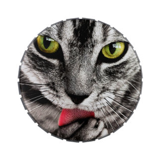 ARE YOU TALKING TO ME (tabby cat) ~ Jelly Belly Tins