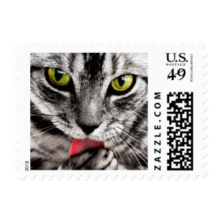 ARE YOU TALKING TO ME (tabby cat) ~.jpg Postage