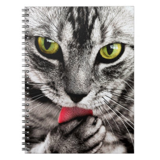 ARE YOU TALKING TO ME (tabby cat) ~ Notebook