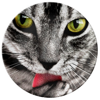 ARE YOU TALKING TO ME (tabby cat) ~ Plate
