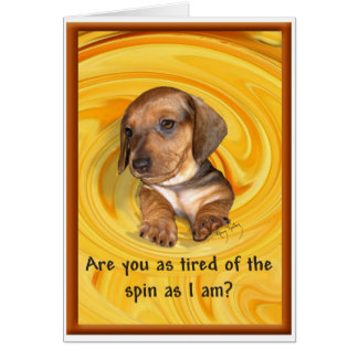 Are you tired of the spin? A dachshund's thoughts Card