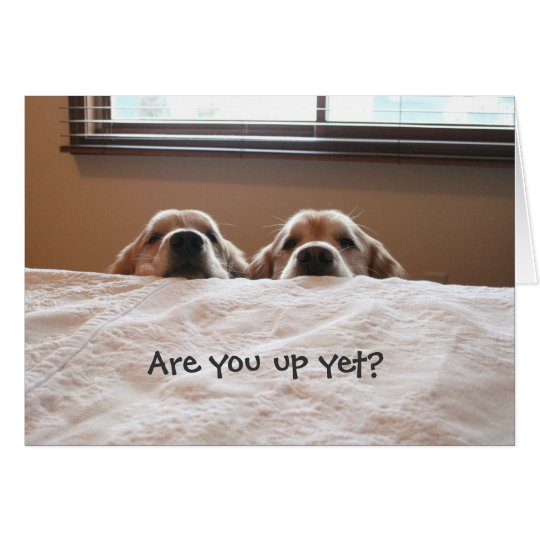 Are You Up Yet? Golden Retriever Greeting Card