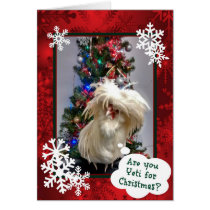 Are You Yeti For Christmas! Card