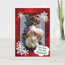 Are You Yeti For Christmas! Holiday Card