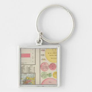 Area and Population of the World in 1890 Keychain