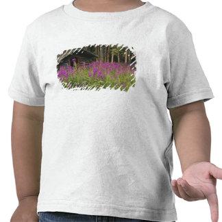 Área de Canadá, el Yukón, río de Ross, cabina Camisetas