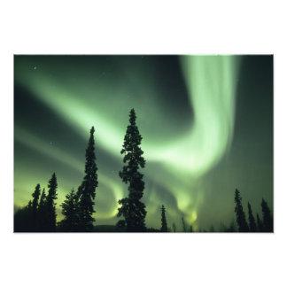 Área de los E.E.U.U., Fairbanks, Alaska central, a Cojinete