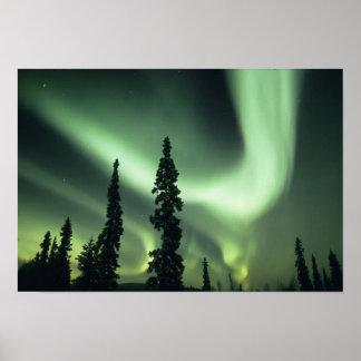 Área de los E.E.U.U., Fairbanks, Alaska central, a Poster
