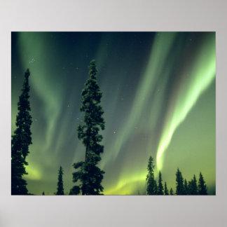 Área de los E.E.U.U., Fairbanks, Alaska central, a Posters