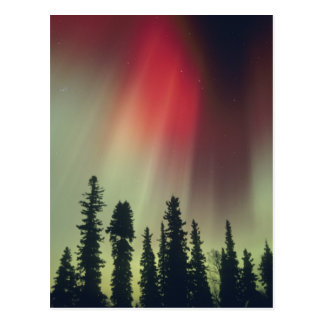 Área de los E.E.U.U., Fairbanks, Alaska central, a Tarjeta Postal