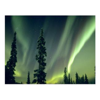 Área de los E.E.U.U., Fairbanks, Alaska central, a Postales